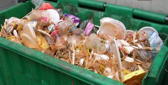 plastic-disposables.jpg